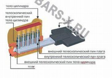 внутренности цилиндра-личинки